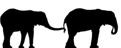 Het silhouet van de olifant Royalty-vrije Stock Foto's