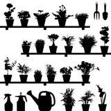 Het Silhouet van de Pot van de Installatie van de bloem Royalty-vrije Stock Fotografie
