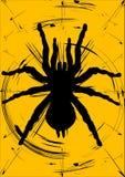 Het silhouet van de spin Stock Afbeelding