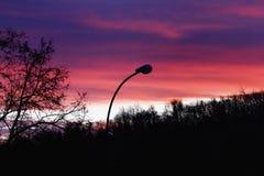 Het silhouet van de stad van licht op de achtergrond van daw Royalty-vrije Stock Afbeeldingen