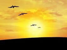 Het silhouet van de vogel royalty-vrije stock fotografie