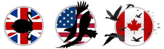 Het Silhouet van de vogel op Vlag Royalty-vrije Stock Afbeelding