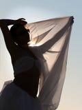 Het silhouet van de vrouw Royalty-vrije Stock Foto's