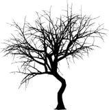 Het silhouet van de winter Royalty-vrije Stock Fotografie