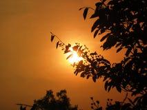 Het silhouet van de zonsondergang Stock Foto