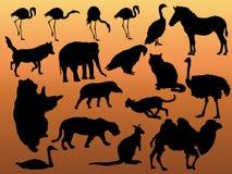 Het silhouet van dieren Stock Foto's