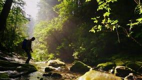 Het silhouet van een mens met een rugzak, kruist een bergrivier of een stroom Mooi bos met stralen van de ochtendzon stock video