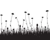 Het silhouet van het gras Royalty-vrije Stock Afbeelding