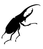 Het silhouet van het insect Royalty-vrije Stock Foto