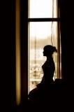 Het silhouet van het meisje Stock Afbeelding