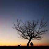 Het silhouet van het paar in het zonsonderganglicht royalty-vrije stock afbeelding