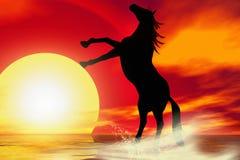 Het silhouet van het paard vector illustratie