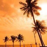 Het silhouet van kokosnotenpalmen langs het strand en het overzees met zon benadrukken hemel en wolkenachtergrond royalty-vrije stock foto