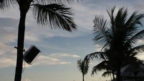 Het silhouet van palmen bij zonsondergang Donkere scène Nacht op het magische tropische eiland van Bali, Indonesië Onuitgegeven l stock video