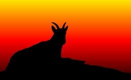 Het Silhouet van schapen Stock Afbeelding