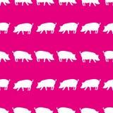 Het silhouet van varkensschaduwen in lijnen roze patroon eps10 stock illustratie