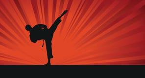 Het silhouetachtergrond van de karate royalty-vrije illustratie