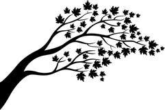 Het silhouetbeeldverhaal van de esdoornboom stock illustratie