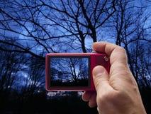 Het Silhouetbeeldzoeker in camera van de avondboom stock fotografie