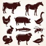 Het silhouetinzameling van landbouwbedrijfdieren Royalty-vrije Stock Afbeeldingen