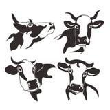 Het silhouetmelk van het koe hoofdvee stock afbeelding