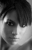 Het silhouetportret van de vrouw in Zwart & Wit Stock Afbeelding