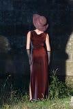 Het silhouetscène van de vrouw royalty-vrije stock afbeeldingen