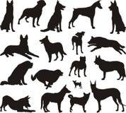 Het silhouetvector van de hond stock afbeelding