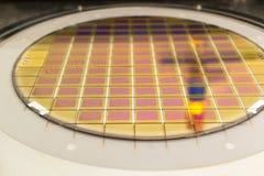 Het siliciumwafeltje met microchips vast in de houder is op de klem en klaar voor proces het schoonmaken stock afbeeldingen