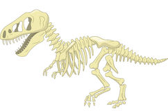 Het skelet van de beeldverhaaldinosaurus Stock Foto