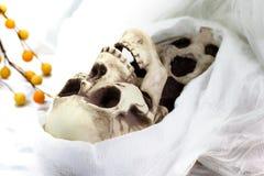 Het skelet van de dood (onverbiddelijke maaimachine) Royalty-vrije Stock Foto