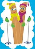 Het skiån royalty-vrije illustratie