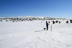 Het skiån Royalty-vrije Stock Afbeeldingen