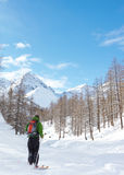 Het skiån royalty-vrije stock foto