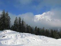 Het skiån in de alpen Royalty-vrije Stock Afbeeldingen