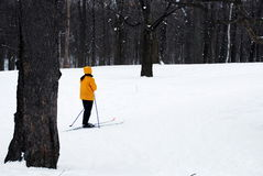 Het ski?en Stock Afbeeldingen