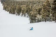 Het ski?en in het bos stock afbeelding
