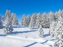 Het ski?en helling royalty-vrije stock fotografie