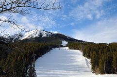 Het ski?en hellingen in Kananaskis-land, Alberta, Canada royalty-vrije stock foto