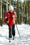 Het ski?en in het bos Royalty-vrije Stock Afbeeldingen