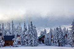 Het ski?en onder de Pas Washington van Snoqualme van Miststoeltjesliften royalty-vrije stock fotografie