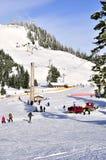 Het Ski?en van de Berg van het hoen Gebied Stock Afbeeldingen