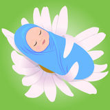 Het slapen babe in Daisy Stock Foto