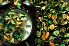 Het slot op droge bloemen, de kleurrijke achtergrond, de Tijd en het geheugen veranderen dienovereenkomstig royalty-vrije stock afbeelding