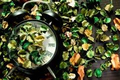 Het slot op droge bloemen, de kleurrijke achtergrond, de Tijd en het geheugen veranderen dienovereenkomstig stock afbeeldingen