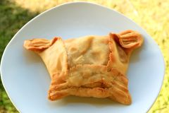 Het smakelijke Rundvlees vulde Chileense Smakelijke Gevulde Gebakje of Empanadas DE Pino Served op Witte Plaat royalty-vrije stock fotografie