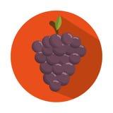 het smakelijke sappige ontwerp van de druivenoogst bedriegt Stock Afbeelding