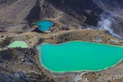 Het smaragdgroene Nationale Park van Tongariro van Meren, Nieuw Zeeland Royalty-vrije Stock Fotografie