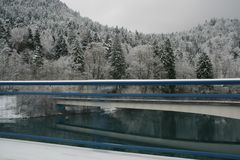 Het sneeuw behandelde bos van pijnboombomen Royalty-vrije Stock Foto's