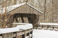 Het sneeuw de Winter Behandelde Brug Schilderen Stock Fotografie